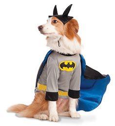 DC Comics Batman Pet Costume Shirt With Cape Costume Shirts, Pet Costumes, Cool Costumes, Costume Ideas, Xl Shirt, Grey Shirt, Batman Dog, Halloween Costume Shop, School Bags For Girls