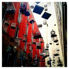 Forgotten Songs. Angel Place, Sydney