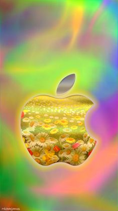 Download Misty Daisies Wallpaper 640 x 1136 Wallpapers - 4566199 - Apple Logo Daisies Flowers | mobile9