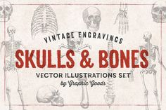 11 Skulls & Bones Illustration Set by Graphic Goods on @creativemarket