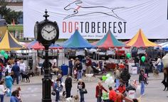Come out to Beaumont for #DOGtoberfest! Oct. 10 via Houston Style Magazine