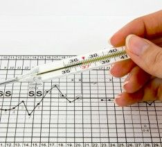 Thermometer, graphs and fertility chart