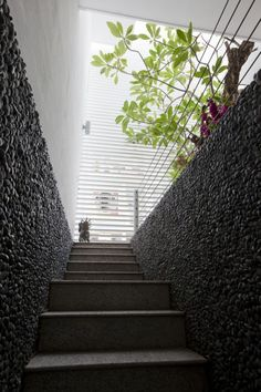Stairs wall Inspiration