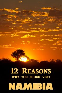 12 reasons why you should visit Namibia and there are many more.