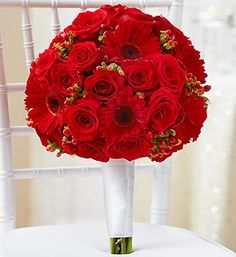 All Red Bridal Bouquet- red roses, red Gerbera daisies, red hypericum and variegated pittosporum, accented with a crisp white satin ribbon $50.00- $135.00