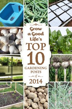 Grow a Good Life's Top 10 Gardening Posts of 2014