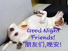 睡觉时间到了, 一天又要结束了。 晚安哦! 来做个好梦吧! 不知道周先生要带我去哪里游玩呢?  Going to meet Mr Zhou... Night night! Sweet Dream!