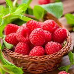 Mint Berry Toner  1/2 cup chopped mint leaves (or 2 organic tea mint bags), 1/4 cup whole raspberries, 3 cups water. Combine liquid and mint until boiling, reduce and add berries until smell strong aroma. Remove from heat and strain into container.