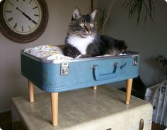 Remove lid and add a cushion to a vintage suitcase...voila'....pet bed or ottoman