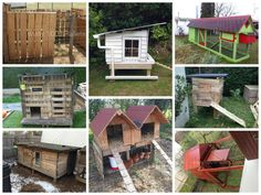 Chickens are one of the best way to green your life and garden. Perfect for kids, they also eat almost every leftover from your food and will provide you with fresh eggs ! A perfect virtuous circle ! All the chicken coops below were made from pallets showing that you can also reuse materials to make…