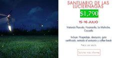 Promociones de Turin Viajes: Paseo Santuario de Las Luciérnagas