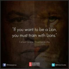 Train with lions Carlson Gracie, Brazilian Martial Arts, Mma Training, Warrior Spirit, Artist Quotes, Martial Artist, Motivational Pictures, Brazilian Jiu Jitsu, Mixed Martial Arts