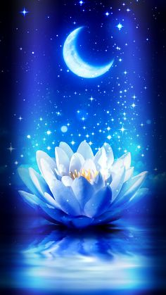 By Artist Unknown. Cute Galaxy Wallpaper, Night Sky Wallpaper, Flower Phone Wallpaper, Scenery Wallpaper, Cute Wallpaper Backgrounds, Wallpaper Iphone Cute, Pretty Wallpapers, Kawaii Wallpaper, Lotus Flower Pictures