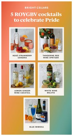 If you're trying to keep that Pride month aesthetic going all year long, try these rainbow cocktails in honor of Pride month! Looking for cocktail recipes? We love these easy wine cocktail recipea, wine cocktail recipes rose, wine cocktail recipes red, and wine cocktail recipes white! Red Wine Spritzer, Sangria Wine, Red Sangria, Ginger Cocktails, Refreshing Cocktails, Cocktail Recipes, White Wine Cocktail, Dry White Wine, Rainbow Cocktail