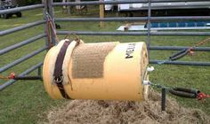 bucking bull for children. Used 30 gal. barrell, PVC pipe, rope, and trampline springs.