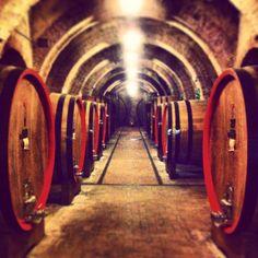 Anniversario di nozze in Toscana (Atto II) - Montepulciano e Vino Nobile