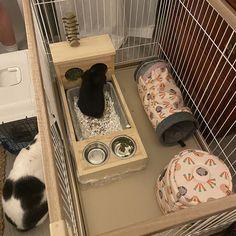 Bunny rabbit hay feeder/litter pan/food & water bowls   Etsy Diy Bunny Cage, Bunny Cages, Rabbit Hutch Plans, Rabbit Hutches, Pet Bunny Rabbits, Bunnies, Wire Rabbit Cages, Rabbit Pen, Bunny Room