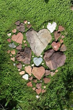 Guess I am not the only one that collects heart shaped stones.  They are not as hard to find as you might think.         Heart stones