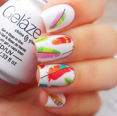 awesome 2 Patterns/Sheet Colorful Feather Nail Art/Water Decals - BP-W18 # 20609