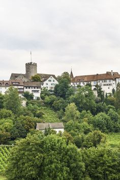 Ausflugstipp rund um Zürich: Regensberg Hobbies And Crafts, Switzerland, Kanton, River, Mansions, House Styles, Wonderland, Outdoor, One Day Trip