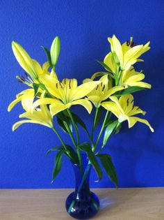 Yellow lilies in my kitchen
