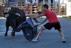Santacara: Vacas Hermanos Marcen (11) Fictional Characters, Cows, Siblings, Fantasy Characters