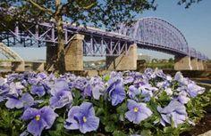 Purple People Bridge - Newport/Cincinnati  1872