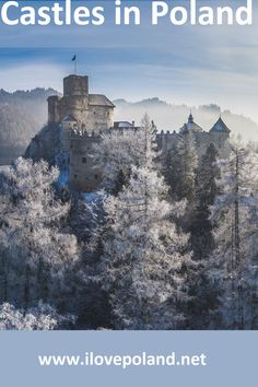 Poland is full of medieval castles and romantic ruins. Beautiful Castles, Beautiful Places, Europe Travel Tips, Travel Guide, Poland Travel, Warsaw Poland, Weekend Breaks, European Destination, Abandoned Castles