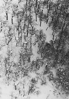 Sobras 1974 | Geraldo de Barros