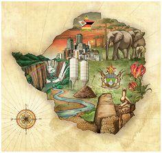 Save the Animals of Zimbabwe
