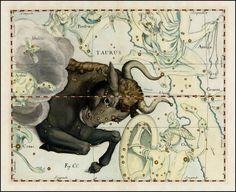 #masculine #zodiac #taurus