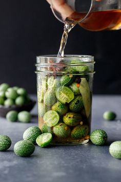 What to do with cucamelons? Make pickles! This quick refrigerator pickle recipe is just the ticket. Pickled Watermelon Rind, Watermelon Pickles, Olives, Mantu Recipe, Quick Refrigerator Pickles, Wassail Recipe, Scallop Recipes, Eat To Live, Canning Recipes