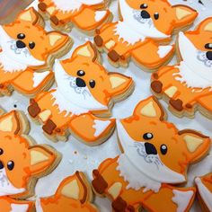 lots of little foxes