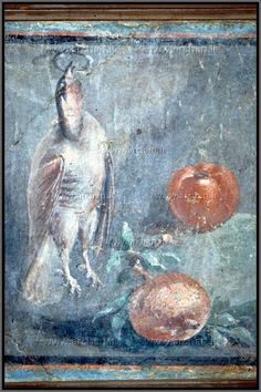 Ercolano, casa dei Cervi, affresco 45-79 d.C., quadri di nature morte con cacciaggione e melograni