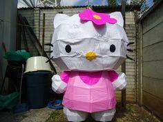 Piñata for my birthday!