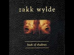 Zakk Wylde -  Road back home