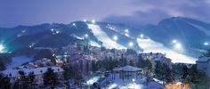 Little known trivia fact #42; three-quarters of South Korea is extremely mountainous. And where there are mountains, there is snow. South Korea is one of the ski worlds' best-kept secrets and if you enjoy carving perfect turns in corduroy snow in a country with an exotic culture, then a winter jaunt to the Korean peninsula is worth considering.