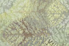 Light Leaf Pattern - Wall Mural & Photo Wallpaper - Photowall
