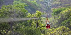 Canopy Adventure (DCL Port Adventure) -Puerto Vallarta Mexico