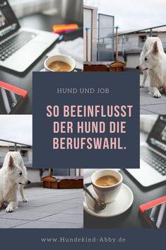 #Hund #Hundeblogger #Hundeliebe #Wissen #Job  Hunde || Erziehung || DIY || Wissen || Gesundheit