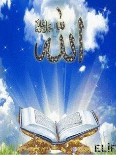 Islamic Wallpaper Hd, Mecca Wallpaper, Quran Wallpaper, Rose Flower Wallpaper, Flowery Wallpaper, Allah Calligraphy, Islamic Art Calligraphy, Beautiful Nature Pictures, Beautiful Gif