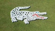 Love it! #golf #golfdesign #golfhumor