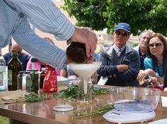 6biologico organizza il 3°corso sulle ERBE OFFICINALI - Bracciano 2014