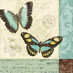 Butterfly Patchwork II by Pela Studio - Art Print Framed & Unframed at www.framedartbytilliams.com