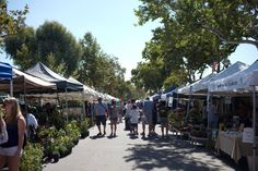 The Claremont Farmers and Artisans Market. Every Sunday from 8 a.m. to 1 p.m. in the Claremont Village.