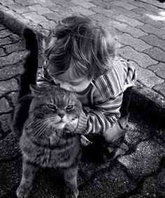 20 Heartwarming Photos Of Kids Playing With Their Cats Animals For Kids, Animals And Pets, Cute Animals, Animals Images, Crazy Cat Lady, Crazy Cats, I Love Cats, Cute Cats, Adorable Kittens