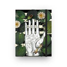 Sketchbook Dragonfly's Fortune de @lagostadesregrada | Colab55 #libelula #flores #verde #listras
