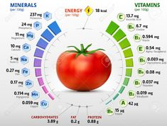 Illustration of Vitamins and minerals of tomato. Infographics about nutrients in tomato. Qualitative vector illustration about tomato vitamins vegetables health food nutrients diet etc vector art, clipart and stock vectors. Calendula Benefits, Matcha Benefits, Coconut Health Benefits, Vitamin A, All Vitamins, Vitamins And Minerals, Nutrition Chart, Health And Nutrition, Health Tips