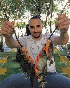 Para quem não viu a foto anterior ficamos 2 dias na selva Amazônica pescamos Piranha e veja o resultado do Leo com todas os peixes que pegamos! Foi incrível e detalhe: nosso guia fritou colocou alguns temperos e comemos tudo! Hahahah e aí já tiveram uma experiência dessa pela Amazônia? @iguanatour quem nos proporcionou essa experiência. . #passeio #viagem #gourmetadois #gourmetadoisporai #travel #lifestyle #estilodevida #comida #cultura #lugares #amazonia #manaus #floresta #amazonas #piranha…