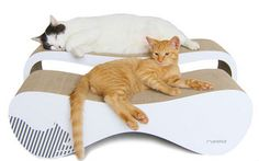 Cat Kitten Pet Scratcher Lounge- Coming soon from FELIGN